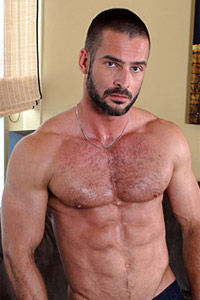 Hairy male chest